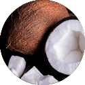 kokosoel Hundezahnpflege